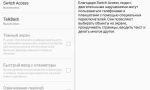 Что такое switch access в телефоне