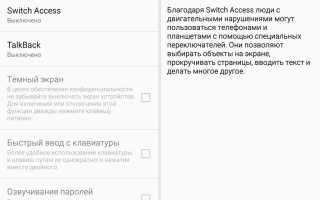 Что такое switch access в телефоне