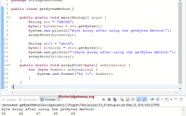Java string getbytes